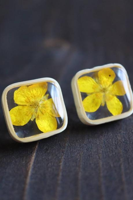 Buttercup Stud Earrings / Real Flower Jewelry / Lovely Gift For Her / Resin Jewelry