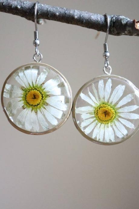 Real Daisy Earrings / Dainty Gifts For Her / Handmade Resin Jewelry / Botanical Jewelry